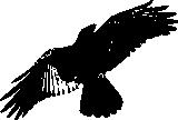 Ravenfly